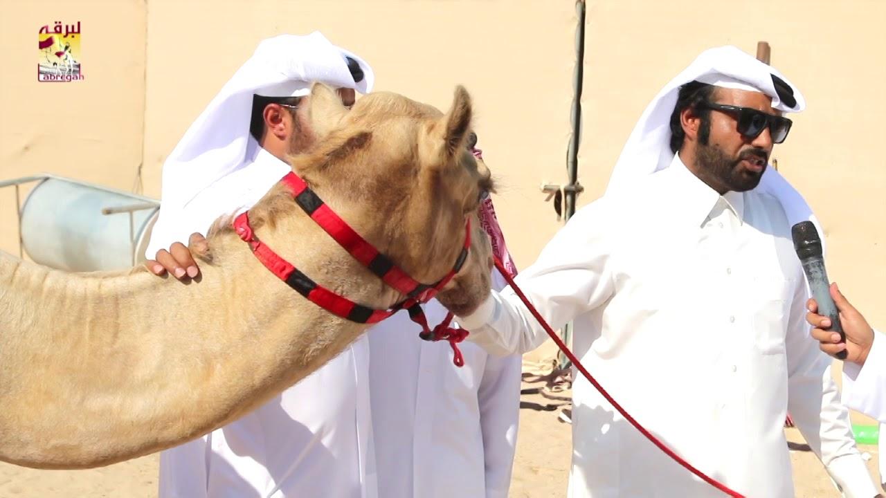 لقاء مع سعد بن حمد ال سعد الشوط الرئيسي للجذاع قعدان إنتاج المحلي الثالث صباح ١٣-١٠-٢٠١٨