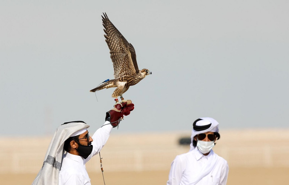 برعاية الشيخ جوعان .. انطلاق مهرجان مرمي الدولي